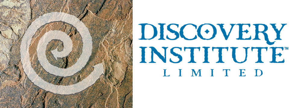 The Discovery Institute & Discovery Program